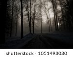dark magical path  | Shutterstock . vector #1051493030