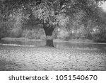 autumn landscape. a solitary... | Shutterstock . vector #1051540670