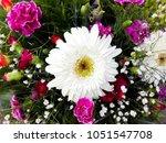 bouguet of white gerbera  ... | Shutterstock . vector #1051547708