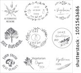 hand drawn labels and elements... | Shutterstock .eps vector #1051563686