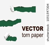 torn edges paper hole lacerated ...   Shutterstock .eps vector #1051597304