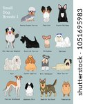 group of small dogs breeds hand ... | Shutterstock .eps vector #1051695983