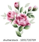watercolor roses. bouquet of... | Shutterstock .eps vector #1051720709