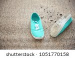 pair of shoes with mud on carpet | Shutterstock . vector #1051770158