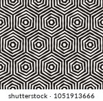 hand drawn black and white ink... | Shutterstock .eps vector #1051913666