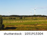 estonian rural country... | Shutterstock . vector #1051915304