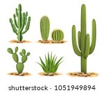 cactus plants set of desert... | Shutterstock .eps vector #1051949894