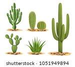 Cactus Plants Set Of Desert...