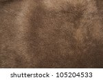 Natural Brown Fur Texture