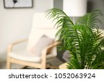 tropical leaves in stylish... | Shutterstock . vector #1052063924