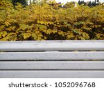 white bench of wood in the park.... | Shutterstock . vector #1052096768