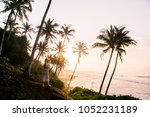 young blond women on sri lanka... | Shutterstock . vector #1052231189