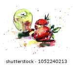 hand drawn real watercolor and... | Shutterstock . vector #1052240213