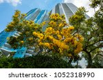 cityscape view of the popular... | Shutterstock . vector #1052318990