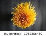 yellow long spaghetti on a... | Shutterstock . vector #1052366450