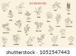 best iron rich foods. hand... | Shutterstock .eps vector #1052547443