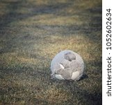 Small photo of old ball on green grass