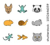 pets color icons set. german... | Shutterstock . vector #1052646059