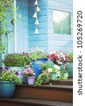 summer potted flowers and...   Shutterstock . vector #105269720