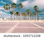 Palm Trees Next To The Beach I...