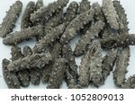 sea cucumber dry ingredients | Shutterstock . vector #1052809013