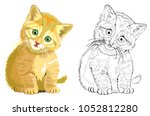 Stock vector colorful and black and white pattern for coloring illustration of cute kitten worksheet for 1052812280