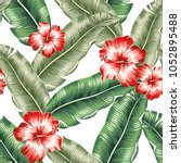 red hibiscus flowers and green...   Shutterstock .eps vector #1052895488