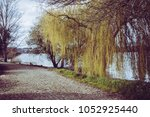 rural lake path | Shutterstock . vector #1052925440