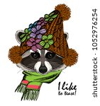 vector raccoon with  knitted... | Shutterstock .eps vector #1052976254