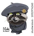 vector raccoon with glasses ... | Shutterstock .eps vector #1052976260
