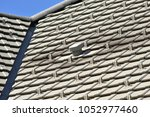 plastic fume hood on the roof... | Shutterstock . vector #1052977460