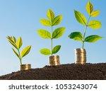 money growth concept   Shutterstock . vector #1053243074
