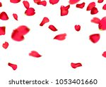 Stock vector red sakura or rose falling petals 1053401660