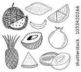 vector fruits drawing | Shutterstock .eps vector #1053420266