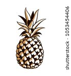 illustration of pineapple... | Shutterstock .eps vector #1053454406
