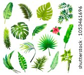 set of tropical leaves. vector... | Shutterstock .eps vector #1053461696
