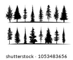 tree silhouette isolated on... | Shutterstock .eps vector #1053483656