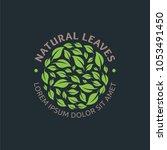 natural leaves  leaf logo...   Shutterstock .eps vector #1053491450