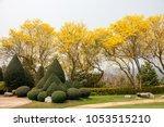 Beautiful Garden With Yellow...