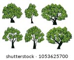 tree illustration. realistic... | Shutterstock .eps vector #1053625700