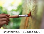 artist hand with brush painting  | Shutterstock . vector #1053655373