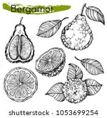 vector collection with sketh... | Shutterstock .eps vector #1053699254