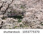 tokyo  japan   march 25th  2018 ...   Shutterstock . vector #1053775370