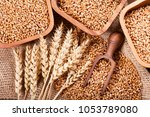 grains and wheat ears on a... | Shutterstock . vector #1053789080