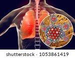 flu viruses in human lungs  3d... | Shutterstock . vector #1053861419