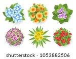 vector set. bushes of garden... | Shutterstock .eps vector #1053882506