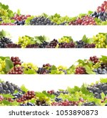 grapes on a white background | Shutterstock . vector #1053890873