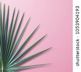 palm leaves on pink background. | Shutterstock . vector #1053904193