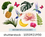 hand drawn tropical collection... | Shutterstock .eps vector #1053921950