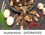 morel's are distinctive... | Shutterstock . vector #1053964193
